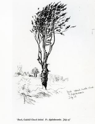 hopkinsbeech