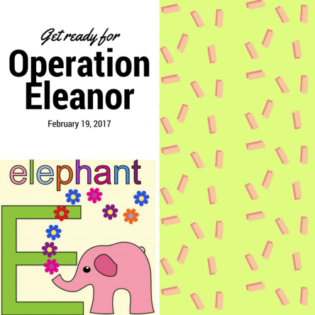 operation-eleanor